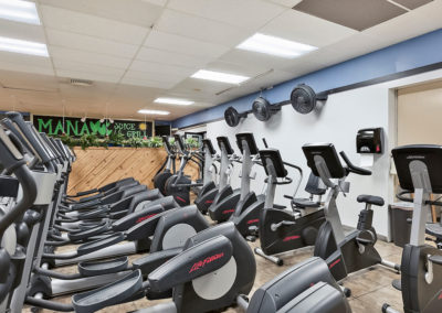 Ellipticals, Bikes & Step Machines
