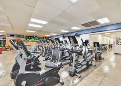 Recumbent Bikes, Ellipticals & Step Machines