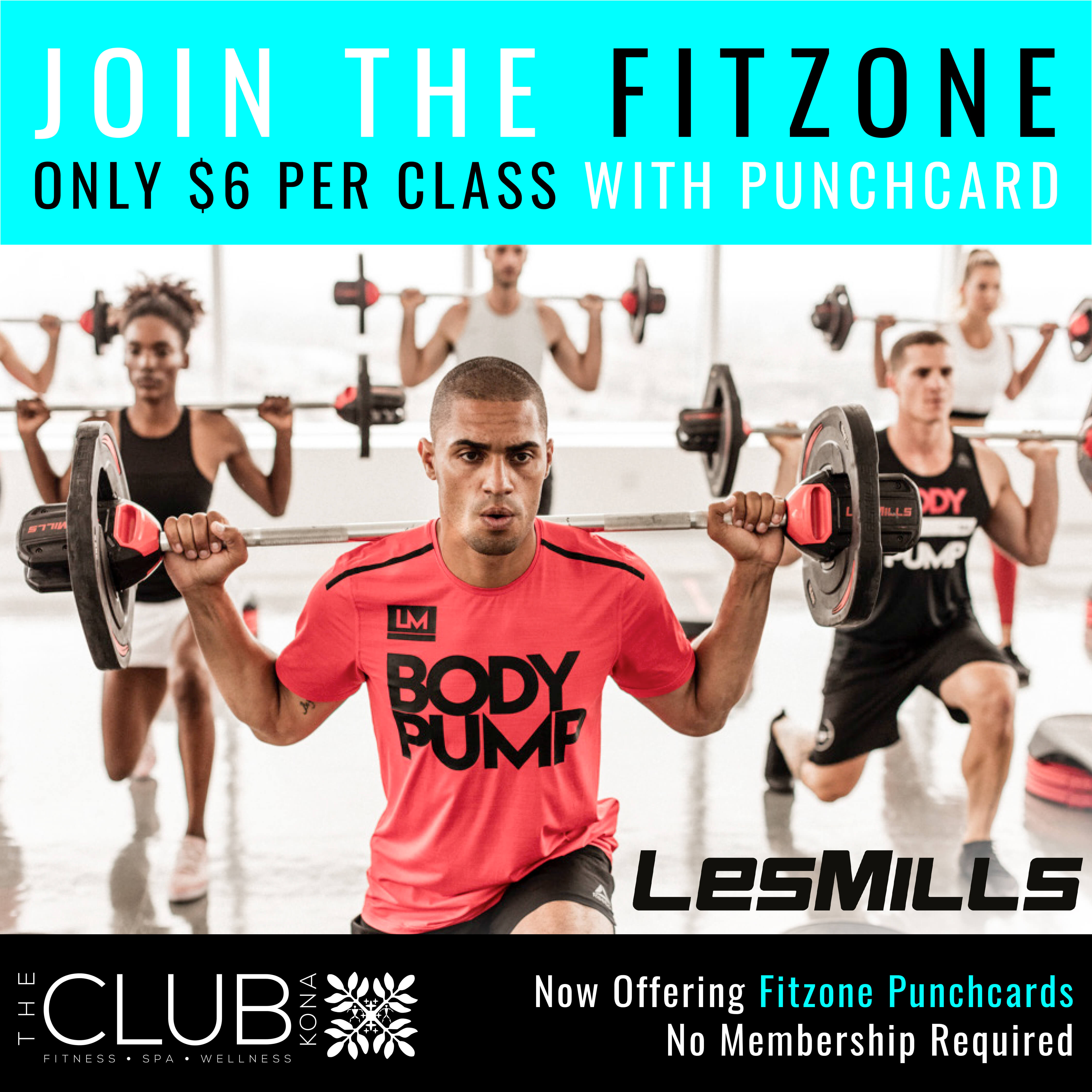 Fitzone Class Punchcards